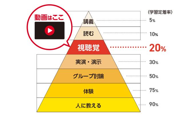 文字よりも動画が定着しやすいラーニングピラミッド図